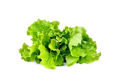Verschiedene Sorten Salat