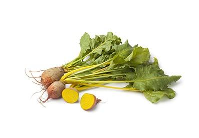 Holländische gelbe und Chioggia Beete sind ab September bis Mai verfügbar.