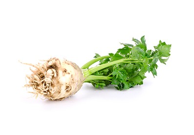 Dutch celeriac is available all the year round.